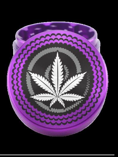 Purple-41.png